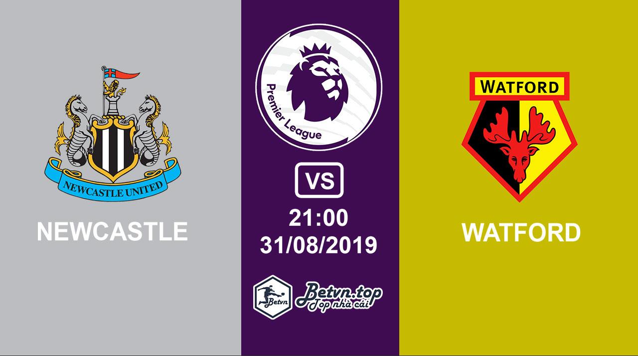 Hướng dẫn cá độ bóng đá qua mạng Newcastle vs Watford, 21h00 31/08/2019 Ngoại hạng Anh