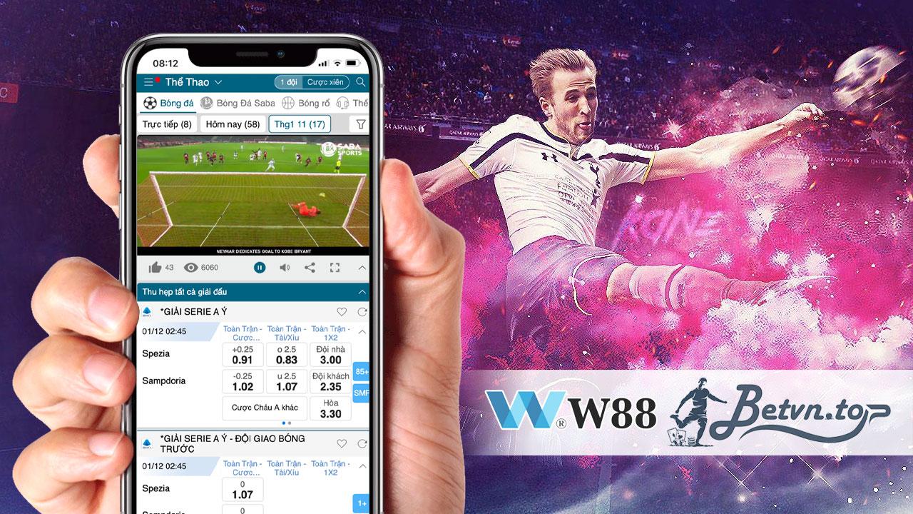 cá cược bóng đá W88