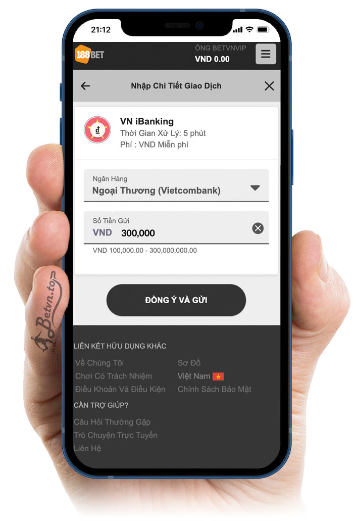VN Ibanking